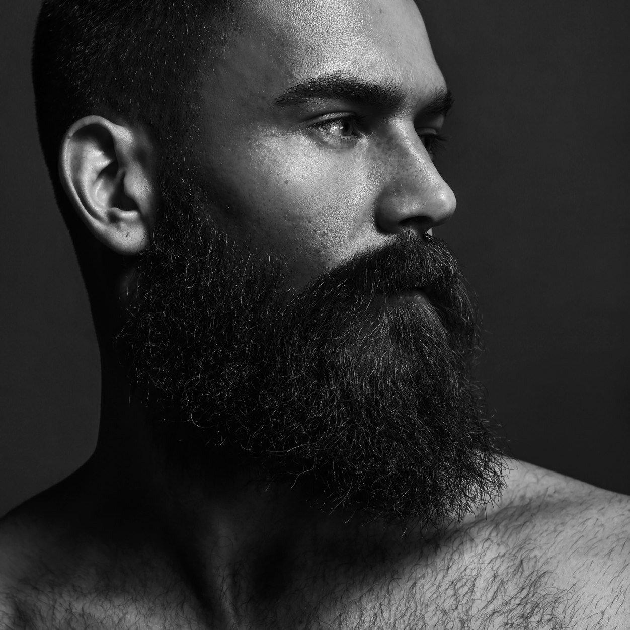 фото бородатого мужика нашем питомнике купить