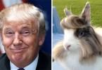 donald-trump-funny-look-alike-14__700-kopya-2