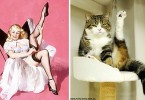 cats-vintage-pin-up-girls-15-586666e911638__700