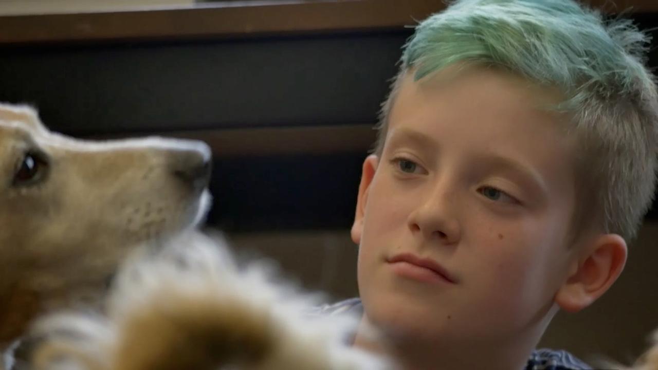 Uzmanlar 3 Yıl Aralıklarla 63 Trans Çocukla Konuştu Sonuçlar Şaşırttı!