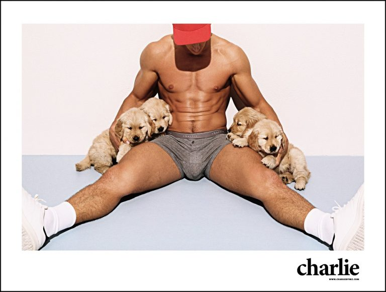 Charlie-by-MZ-pups-04-768x580