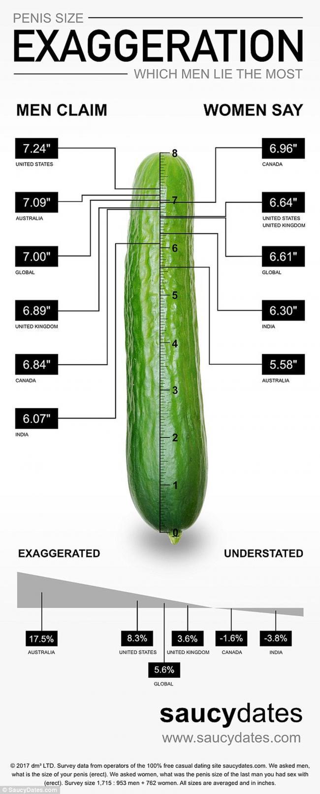 penis size lie chart