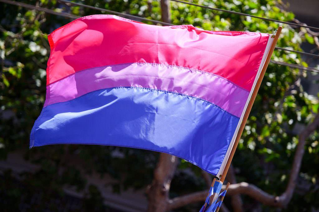 Evlilik Eşitliği Karşıtları Kampanyası; Yanlışlıkla, Biseksüel Bayrağını Logo Olarak Kullandı!