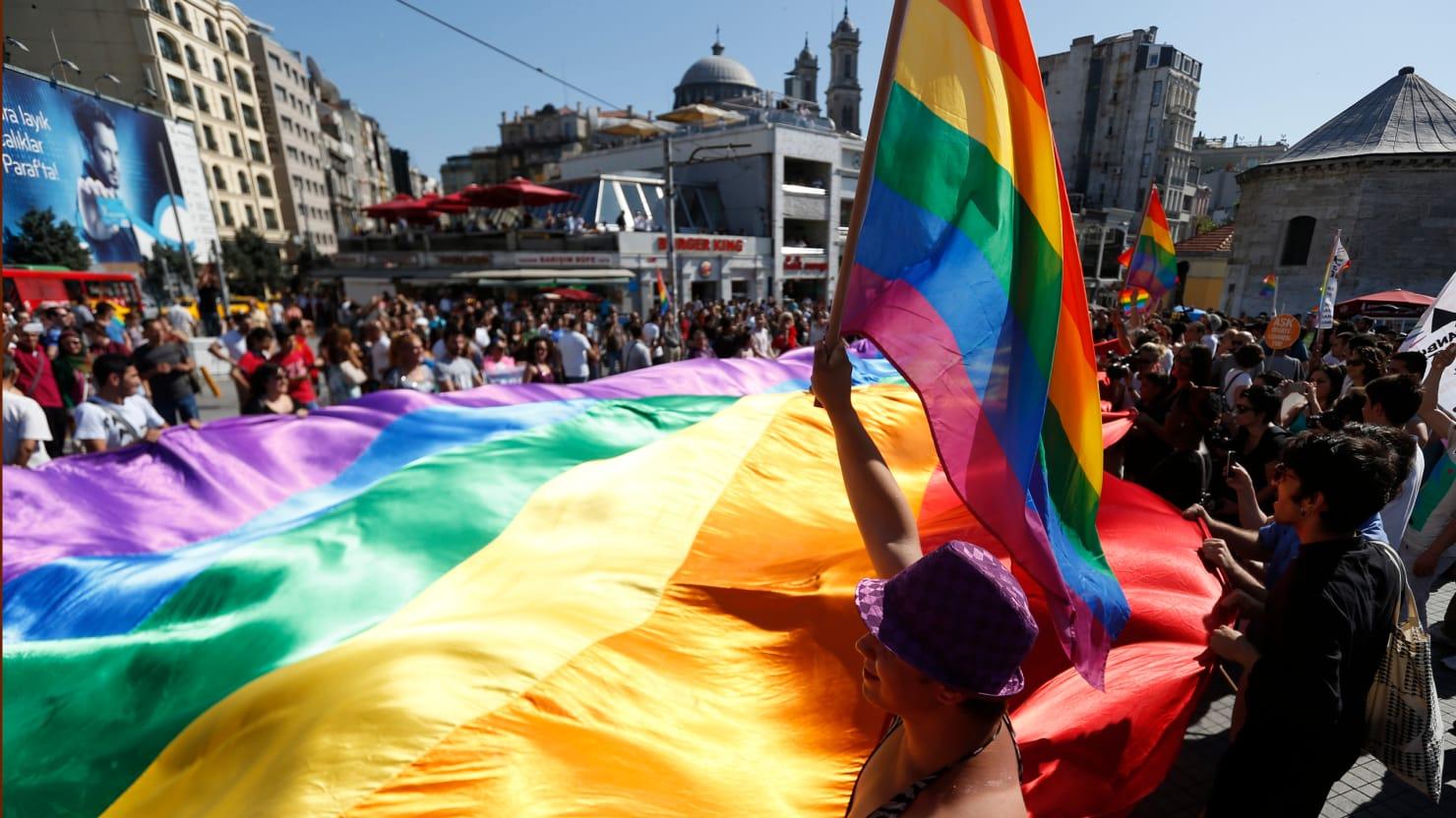 Türkiye'deki Heteroseksüelleri Değil De, Homofobik Eşcinselleri Eğitsek?!