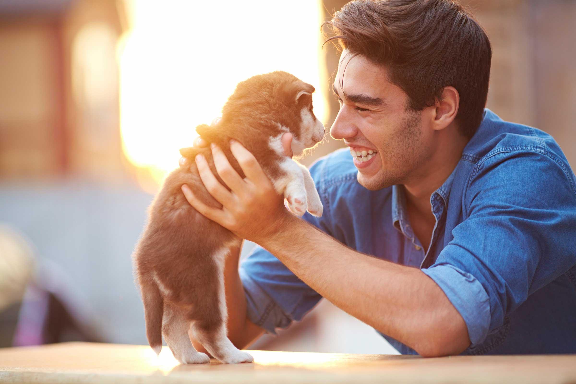 9 Maddede Neden Köpek Dostu Bir Erkekle Birlikte Olmalısınız
