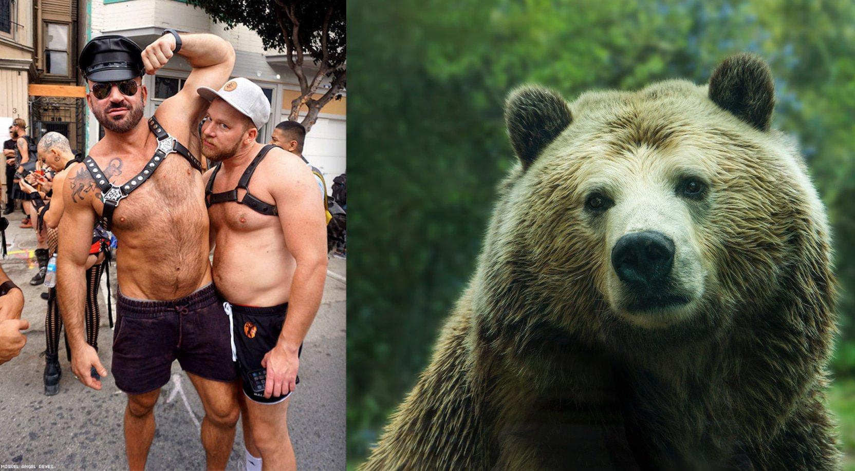 PETA Anti-Hayvan Üslup ile Homofobiyi Bir Tuttu, Sosyal Medya Karıştı!