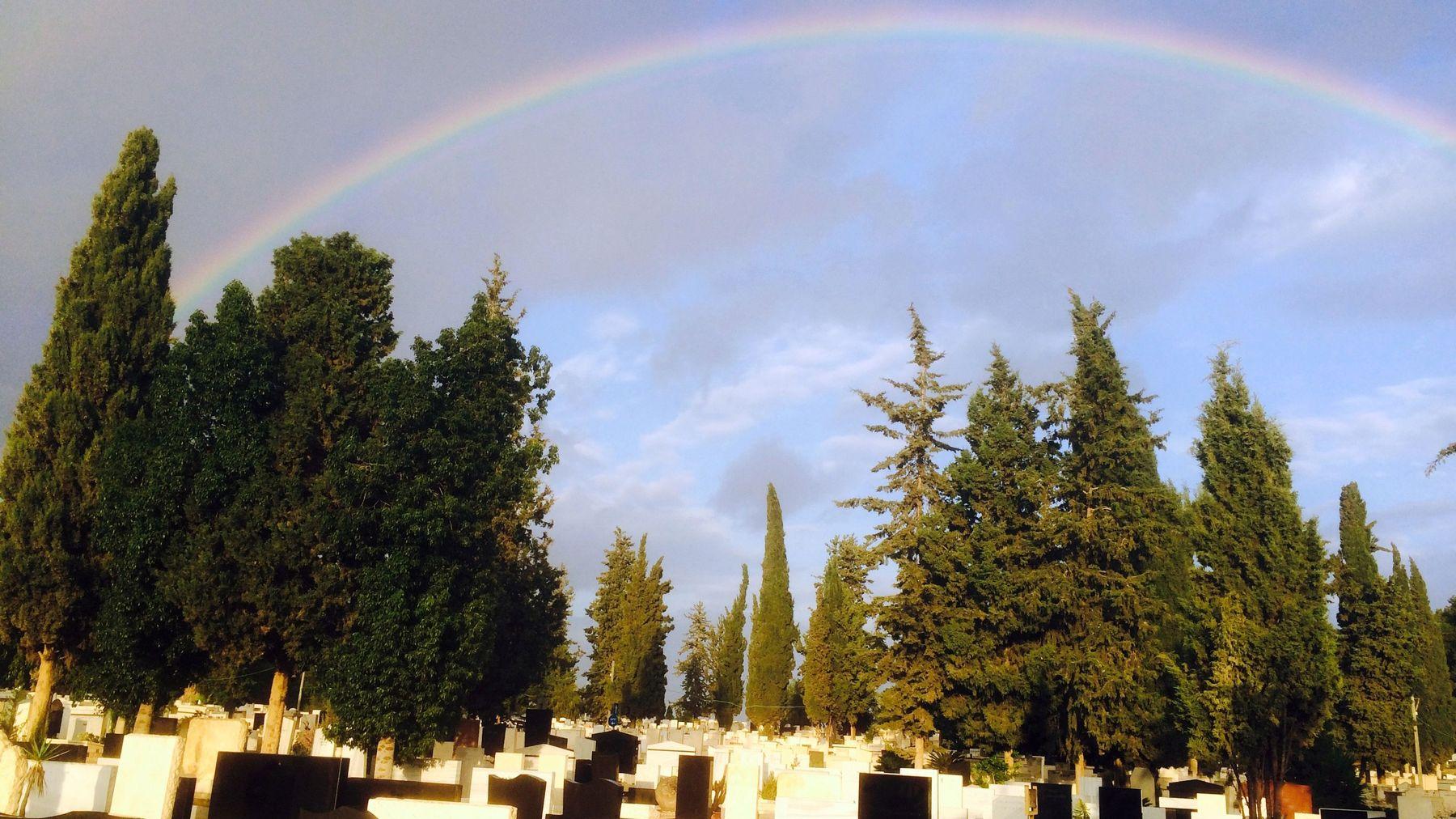 İntihar Eden Eşcinsel Lise Öğrencisi Gökkuşağı Renkli Bir Tabut İle Son Yolculuğuna Uğurlandı
