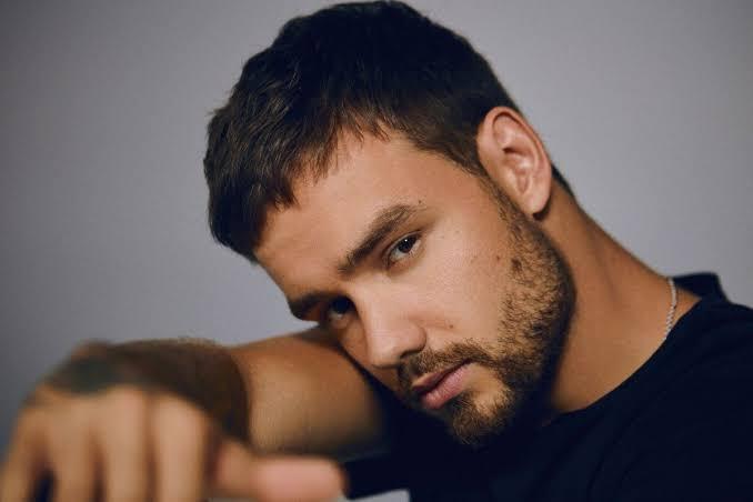 Biseksüeller, Yeni Şarkısı Yüzünden Liam Payne'i Yerde Yere Vurdu!