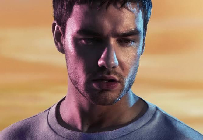 Liam Payne 'Both Ways' İsimli Bifobik Şarkısı İçin Sonunda Özür Diledi