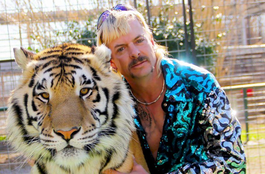 Netflix'in Yeni Kuir Belgeseli: Tiger King