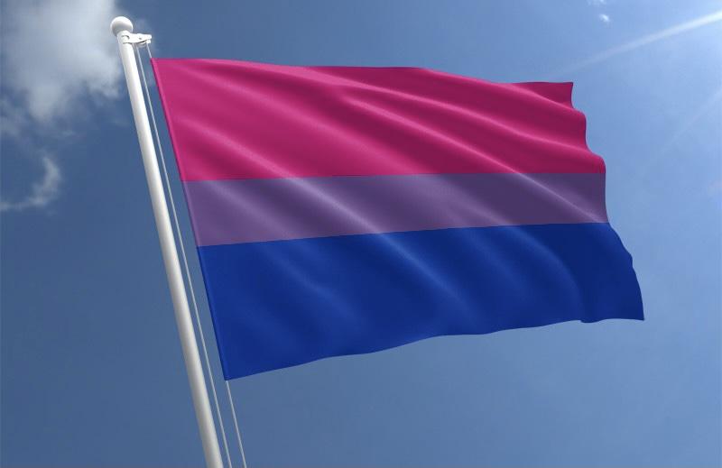 Yine Reddedildi: Biseksüel Bayrağı Emojisi Başka Bahara Kaldı