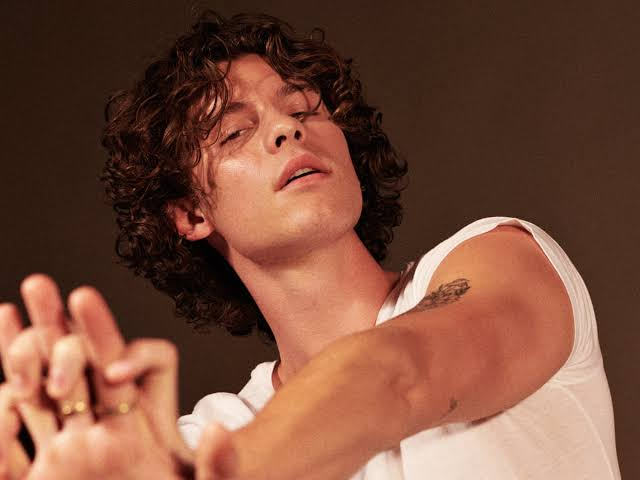 Shawn Mendes: Beni Eşcinsel Sananlar Cahil ve Duyarsız!