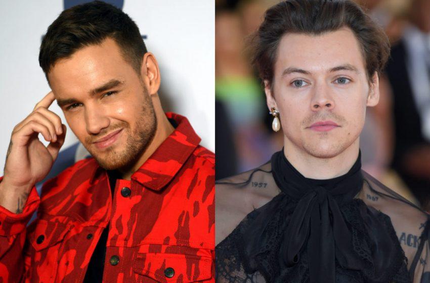 Liam Payne'den Harry Styles'a Destek: İstediğini Giyebilir, Zevk Alıyor Size Ne!