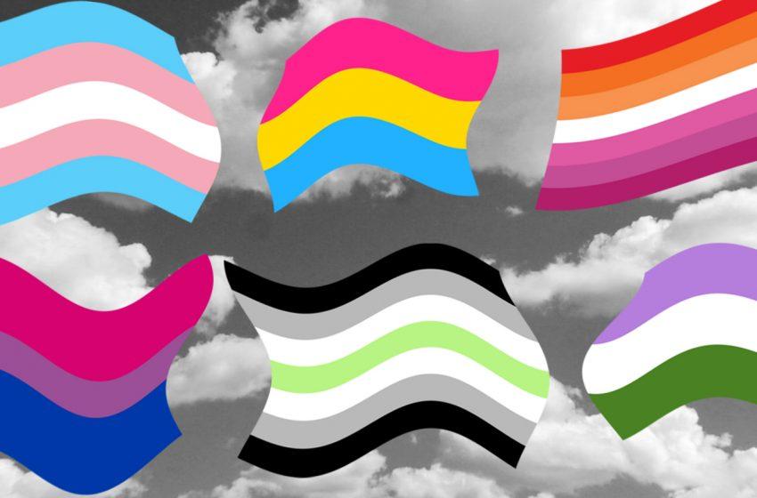 Pride Bayrakları Ne Anlama Geliyor?