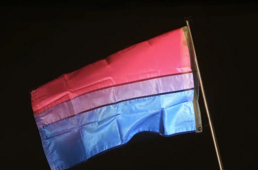 Biseksüel Bayrağı Hakkında Bilmeniz Gereken 6 Gerçek